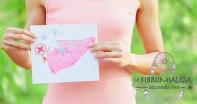 funzioni del fegato sano